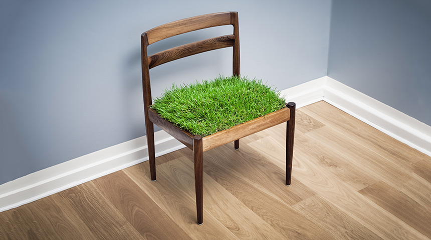 Conceptual Grass Growing On a Chair