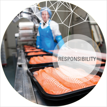 Responsibility over fish in conveyor belts